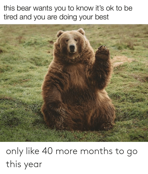 To Go: only like 40 more months to go this year