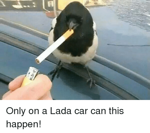 lada: Only on a Lada car can this happen!