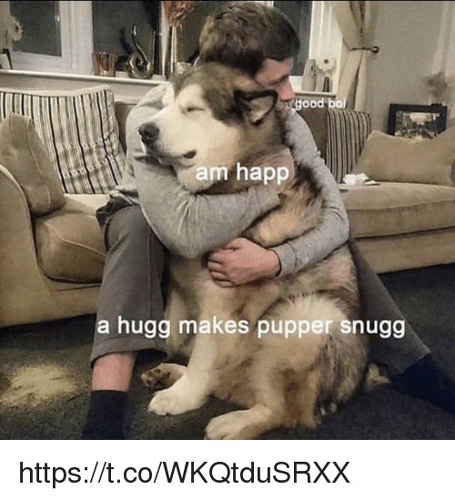 Memes, 🤖, and Ood: ood  am happ  a huga makes pupper snugg https://t.co/WKQtduSRXX