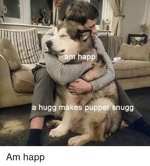 Boi, Ood, and Hugg: ood boi  am happ  a hugg makes pupper snugg Am happ