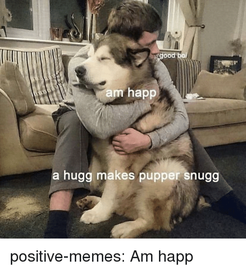 Memes, Tumblr, and Blog: ood boi  am happ  a hugg makes pupper snugg positive-memes:  Am happ