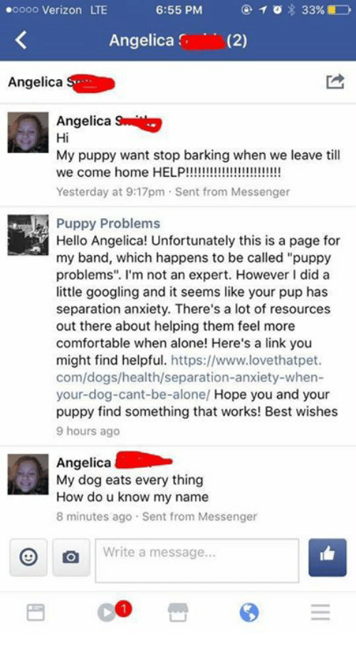 """Being Alone, Comfortable, and Dogs: oooo Verizon LTE  Angelica (2)  Angelica  Angelica  Hi  My puppy want stop barking when we leave till  Yesterday at 9:17pm Sent from Messenger  Puppy Problems  Hello Angelica! Unfortunately this is a page for  my band, which happens to be called """"puppy  problems"""". I'm not an expert. However I did a  little googling and it seems like your pup has  separation anxiety. There's a lot of resources  out there about helping them feel more  comfortable when alone! Here's a link you  might find helpful. https://www.lovethatpet  com/dogs/health/separation-anxiety-when-  your-dog-cant-be-alone/ Hope you and your  puppy find something that works! Best wishes  9 hours ago  Angelica  My dog eats every thing  How do u know my name  8 minutes ago Sent from Messenger  Write a message"""