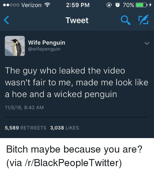 Maybe Because: ooooo Verizon  2:59 PM  Tweet  2  Wife Penguin  @wifepenguin  The guy who leaked the video  wasn't fair to me, made me look like  a hoe and a wicked penguin  11/5/16, 8:42 AM  5,589 RETWEETS 3,038 LIKES <p>Bitch maybe because you are? (via /r/BlackPeopleTwitter)</p>