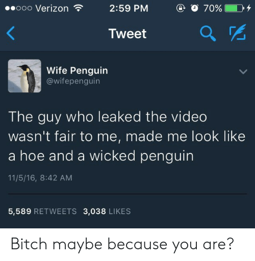 Maybe Because: ooooo Verizon  2:59 PM  Tweet  2  Wife Penguin  @wifepenguin  The guy who leaked the video  wasn't fair to me, made me look like  a hoe and a wicked penguin  11/5/16, 8:42 AM  5,589 RETWEETS 3,038 LIKES Bitch maybe because you are?