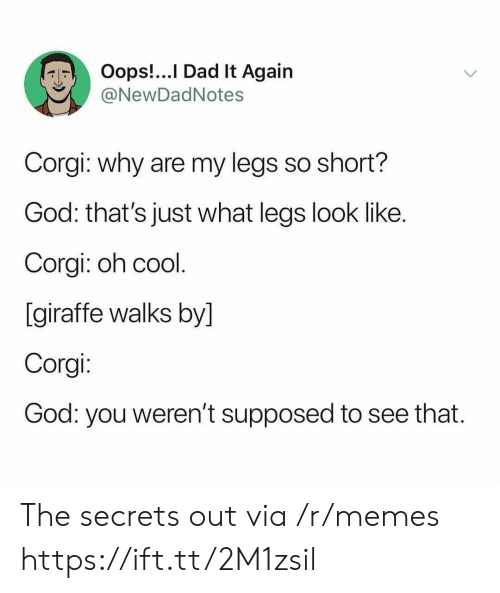 Giraffe: Oops!...I Dad It Again  @NewDadNotes  Corgi: why are my legs so short?  God: that's just what legs look like.  Corgi: oh cool.  [giraffe walks by]  Corgi:  God: you weren't supposed  to see that. The secrets out via /r/memes https://ift.tt/2M1zsil