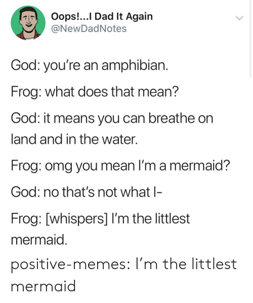 Dad, God, and Memes: Oops!...I Dad lt Again  NewDadNotes  God: you're an amphibian  Frog: what does that mean?  God: it means you can breathe on  land and in the water.  Frog: omg you mean I'm a mermaid?  God: no that's not what l-  Frog: [whispers] I'm the littlest  mermaid positive-memes:  I'm the littlest mermaid