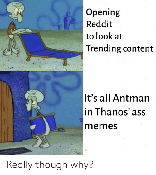 Ass, Reddit, and SpongeBob: Opening  Reddit  to look at  Trending content  It's all Antman  in Thanos' ass  memesS Really though why?