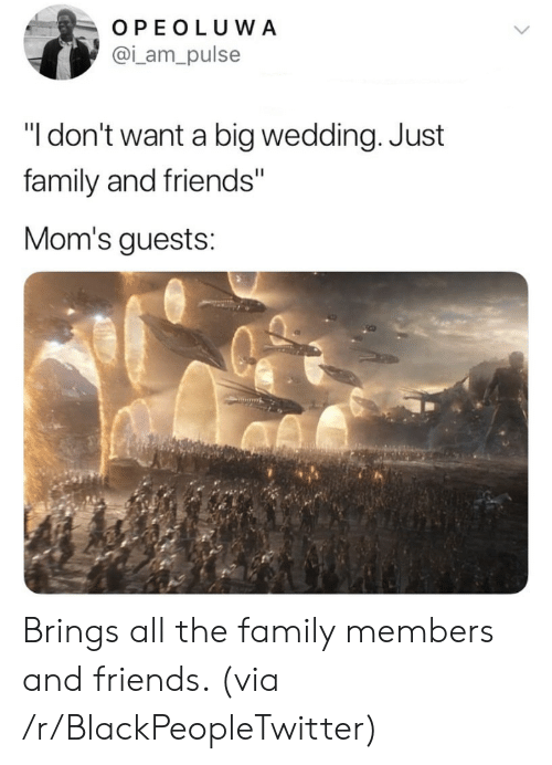 "family and friends: OPEOLUWA  @i_am_pulse  ""I don't want a big wedding. Just  family and friends""  Mom's guests: Brings all the family members and friends. (via /r/BlackPeopleTwitter)"