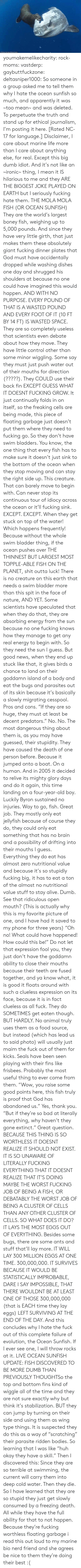 "hardly: ORihad Herrma M  S youmakemelikecharity:  rock-moms:  vastderp:  gaybuttfuckzone:  deltasniper1000:  So someone in a group asked me to tell them why I hate the ocean sunfish so much, and apparently it was ~too mean~ and was deleted. To perpetuate the truth and stand up for ethical journalism, I'm posting it here. [Rated NC-17 for language.]  Disclaimer, I care about marine life more than I care about anything else, for real. Except this big dumb idiot. And it's not like an ~ironic~ thing, I mean it IS hilarious to me and they ARE THE BIGGEST JOKE PLAYED ON EARTH but I seriously fucking hate them.  THE MOLA MOLA FISH (OR OCEAN SUNFISH)  They are the world's largest boney fish, weighing up to 5,000 pounds. And since they have very little girth, that just makes them these absolutely giant fucking dinner plates that God must have accidentally dropped while washing dishes one day and shrugged his shoulders at because no one could have imagined this would happen. AND WITH NO PURPOSE. EVERY POUND OF THAT IS A WASTED POUND AND EVERY FOOT OF IT (10 FT BY 14 FT) IS WASTED SPACE.  They are so completely useless that scientists even debate about how they move. They have little control other than some minor wiggling. Some say they must just push water out of their mouths for direction (?????). They COULD use their back fin EXCEPT GUESS WHAT IT DOESNT FUCKING GROW. It just continually folds in on itself, so the freaking cells are being made, this piece of floating garbage just doesn't put them where they need to fucking go.   So they don't have swim bladders. You know, the one thing that every fish has to make sure it doesn't just sink to the bottom of the ocean when they stop moving and can stay the right side up. This creature. That can barely move to begin with. Can never stop its continuous tour of idiocy across the ocean or it'll fucking sink. EXCEPT. EXCEPT. When they get stuck on top of the water! Which happens frequently! Because without the whole swim bladder thing, if the ocean pushes over THE THINNEST BUT LARGEST MOST TOPPLE-ABLE FISH ON THE PLANET, shit outta luck! There is no creature on this earth that needs a swim bladder more than this spit in the face of nature, AND YET. Some scientists have speculated that when they do that, they are absorbing energy from the sun because no one fucking knows how they manage to get any real energy to begin with. So they need the sun I guess. But good news, when they end up stuck like that, it gives birds a chance to land on their goddamn island of a body and eat the bugs and parasites out of its skin because it's basically a slowly migrating cesspool. Pros and cons.   ""If they are so huge, they must at least be decent predators."" No. No. The most dangerous thing about them is, as you may have guessed, their stupidity. They have caused the death of one person before. Because it jumped onto a boat. On a human. And in 2005 it decided to relive its mighty glory days and do it again, this time landing on a four-year-old boy. Luckily Byron sustained no injuries. Way to go, fish. Great job.  They mostly only eat jellyfish because of course they do, they could only eat something that has no brain and a possibility of drifting into their mouths I guess. Everything they do eat has almost zero nutritional value and because it's so stupidly fucking big, it has to eat a ton of the almost no nutritional value stuff to stay alive. Dumb. See that ridiculous open mouth? (This is actually why this is my favorite picture of one, and I have had it saved to my phone for three years) ""Oh no! What could have happened! How could this be!"" Do not let that expression fool you, they just don't have the goddamn ability to close their mouths because their teeth are fused together, and ya know what, it is good it floats around with such a clueless expression on its face, because it is in fact clueless as all fuck.  They do SOMETIMES get eaten though. BUT HARDLY. No animal truly uses them as a food source, but instead (which has lead us to said photo) will usually just maim the fuck out of them for kicks. Seals have been seen playing with their fins like frisbees. Probably the most useful thing to ever come from them.   ""Wow, you raise some good points here, this fish truly is proof that God has abandoned us."" Yes, thank you. ""But if they're so bad at literally everything, why haven't they gone extinct."" Great question.   BECAUSE THIS THING IS SO WORTHLESS IT DOESNT REALIZE IT SHOULD NOT EXIST. IT IS SO UNAWARE OF LITERALLY FUCKING EVERYTHING THAT IT DOESNT REALIZE THAT IT'S DOING MAYBE THE WORST FUCKING JOB OF BEING A FISH, OR DEBATABLY THE WORST JOB OF BEING A CLUSTER OF CELLS THAN ANY OTHER CLUSTER OF CELLS. SO WHAT DOES IT DO? IT LAYS THE MOST EGGS OUT OF EVERYTHING. Besides some bugs, there are some ants and stuff that'll lay more. IT WILL LAY 300 MILLION EGGS AT ONE TIME. 300,000,000. IT SURVIVES BECAUSE IT WOULD BE STATISTICALLY IMPROBABLE, DARE I SAY IMPOSSIBLE, THAT THERE WOULDNT BE AT LEAST ONE OF THOSE 300,000,000 (that is EACH time they lay eggs) LEFT SURVIVING AT THE END OF THE DAY.   And this concludes why I hate the fuck out of this complete failure of evolution, the Ocean Sunfish. If I ever see one, I will throw rocks at it.   LIVE OCEAN SUNFISH UPDATE: FISH DISCOVERED TO BE MORE DUMB THAN PREVIOUSLY THOUGHTSo  the top and bottom fins kind of wiggle all of the time and they are not  sure exactly why but think it's stabilization. BUT they can jump by  turning on their side and using them as  wing type things. It is suspected they do this as a way of ""scratching""  their parasite ridden bodies. So learning that I was like ""huh okay they  have a skill."" Then I discovered this: Since they  are so terrible at swimming, the current will carry them into deep cold  water. Then they die. So I have learned that they are so stupid they  just get slowly consumed by a freezing death. All while they have the  full ability for that to not happen. Because they're fucking worthless  floating garbage    i read this out loud to my marine bio nerd friend and she agrees   be nice to them they're doing their best :("