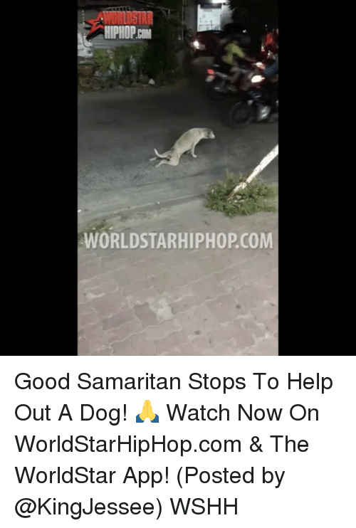 The Worldstar: ORLOSTAR  HIPHOP  WORLDSTARHIPHOPCOM Good Samaritan Stops To Help Out A Dog! 🙏 Watch Now On WorldStarHipHop.com & The WorldStar App! (Posted by @KingJessee) WSHH