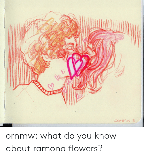 Target, Tumblr, and Blog: ornmw:    what do you know about ramona flowers?