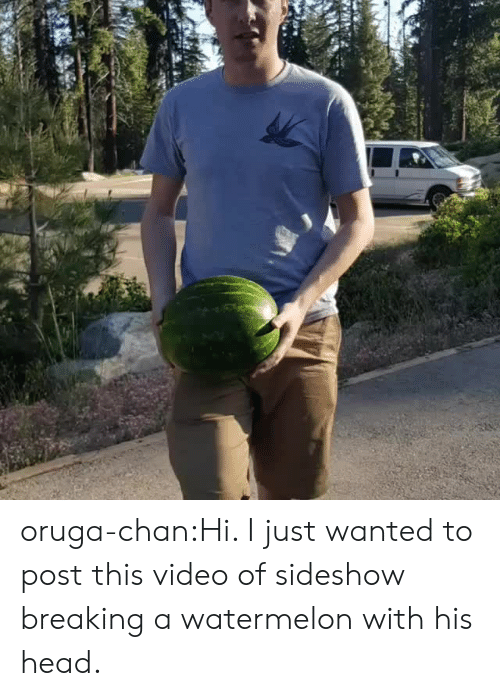 Head, Tumblr, and Blog: oruga-chan:Hi. I just wanted to post this video of sideshow breaking a watermelon with his head.