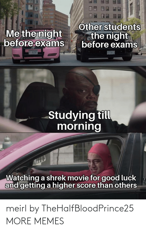 exams: Other students  the night  before exams  Me the night  before exams  G152  S83-5H17  Studying till  morning  Watching a shrek movie for good luck  and getting a higher score than others  Plass meirl by TheHalfBloodPrince25 MORE MEMES