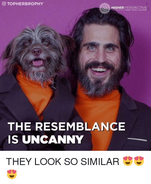 the resemblance is uncanny: OTOPHERBROPHY  HIGHER PERSPECTIVE  THE RESEMBLANCE  IS UNCANNY THEY LOOK SO SIMILAR 😍😍😍