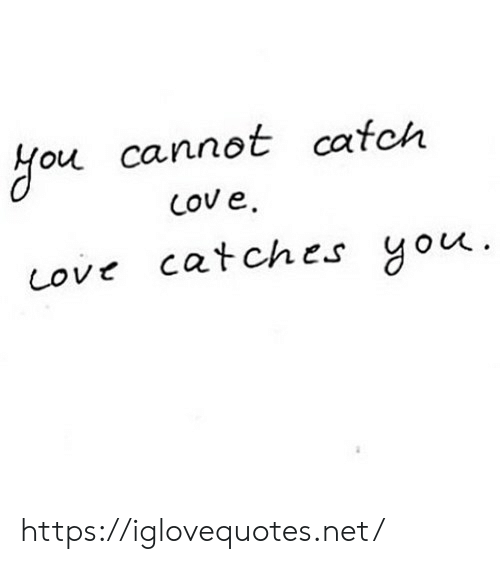 Love, Net, and You: ou cannot cafch  Love catches you https://iglovequotes.net/