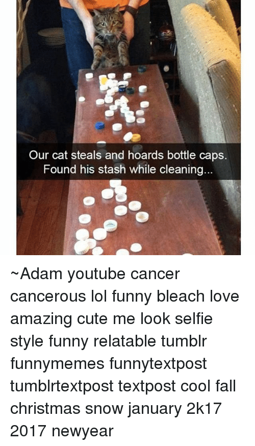 Relatables: Our cat steals and hoards bottle caps.  Found his stash while cleaning ~Adam youtube cancer cancerous lol funny bleach love amazing cute me look selfie style funny relatable tumblr funnymemes funnytextpost tumblrtextpost textpost cool fall christmas snow january 2k17 2017 newyear