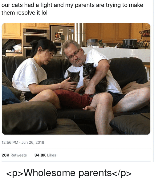 Cats, Lol, and Parents: our cats had a fight and my parents are trying to make  them resolve it lol  12:56 PM Jun 26, 2016  20K Retweets  34.8K Likes <p>Wholesome parents</p>