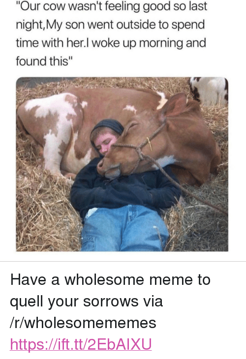"""Meme, Good, and Time: Our cow wasn't feeling good so last  night,My son went outside to spend  time with her.l woke up morning and  found this"""" <p>Have a wholesome meme to quell your sorrows via /r/wholesomememes <a href=""""https://ift.tt/2EbAIXU"""">https://ift.tt/2EbAIXU</a></p>"""