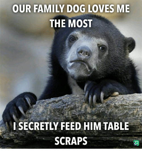 Family, Dog, and Table: OUR FAMILY DOG LOVES ME  THE MOST  ISECRETLY FEED HIM TABLE  SCRAPS