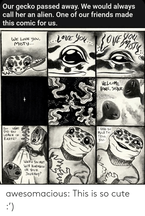 gecko: Our gecko passed away. We would always  call her an alien. One of our friends made  this comic for us.  You  20VE YOU3OVE  WE LOVE you,..LOVE YOu  WE LOVE You,  MISTY...  HELCOME  HOME, SISTER  So... WHAT  DID YOU  LEARN OF  EARTH?  I HAVE SO  MucH TO  TELL  You.  WERE YOU MET  WITH KINDNESS  ON YOUR  JOURNEY? awesomacious:  This is so cute :')