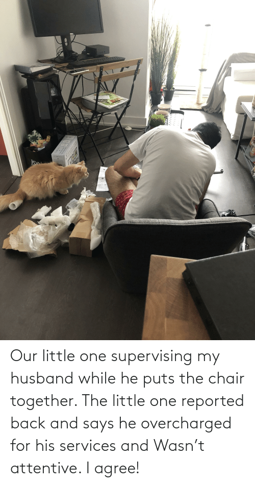 Reported: Our little one supervising my husband while he puts the chair together. The little one reported back and says he overcharged for his services and Wasn't attentive. I agree!