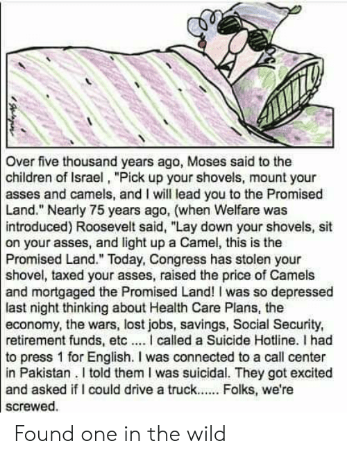 """Children, Lost, and Connected: Over five thousand years ago, Moses said to the  children of Israel, """"Pick up your shovels, mount your  asses and camels, and I will lead you to the Promised  Land."""" Nearly 75 years ago, (when Welfare was  introduced) Roosevelt said, """"Lay down your shovels, sit  on your asses, and light up a Camel, this is the  Promised Land."""" Today, Congress has stolen your  shovel, taxed your asses, raised the price of Camels  and mortgaged the Promised Land! I was so depressed  last night thinking about Health Care Plans, the  economy, the wars, lost jobs, savings, Social Security,  retirement funds, etcI called a Suicide Hotline. I had  to press 1 for English. I was connected to a call center  in Pakistan. I told them I was suicidal. They got excited  and asked if I could drive a truck.. Folks, we're  screwed. Found one in the wild"""