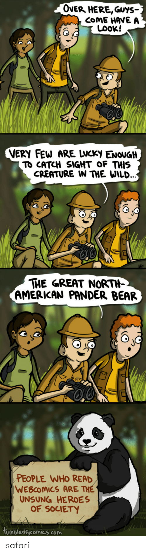 unsung: OveR HERE,Guys-  COME HAVE A  LOOK!  VERY FEW ARE LWCKy ENOUGH  TO CATCH SIGHT OF THIS  CREATURE IN THE WILD.  THE GREAT NORTH-  AMERICAN PANDER BEAR  PEOPLE WHO READ  WEBCOMICS ARE THE  UNSUNG HEROES  OF SOCIETY  tumbledgcomics.com safari