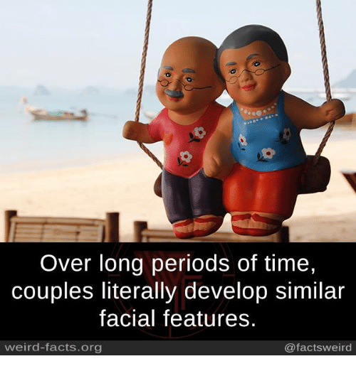 develope: Over long periods of time,  couples literally develop similar  facial features.  weird-facts.org  @factsweird