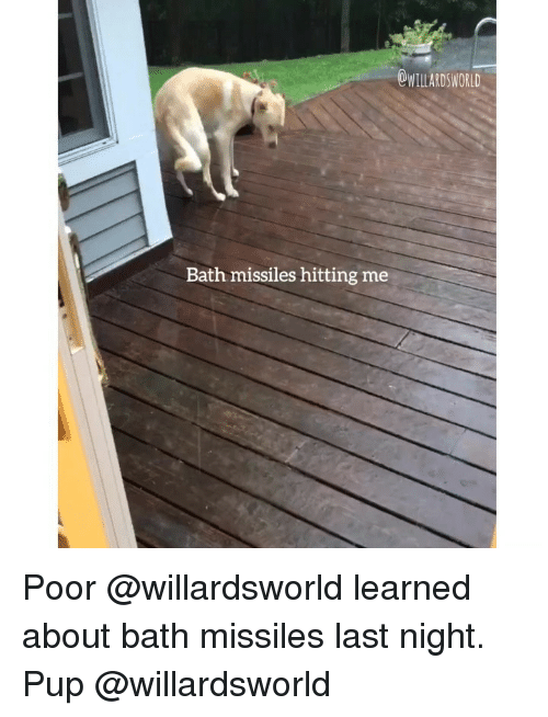 Memes, Pup, and 🤖: OWILLARDSWORLD  Bath missiles hitting me Poor @willardsworld learned about bath missiles last night. Pup @willardsworld