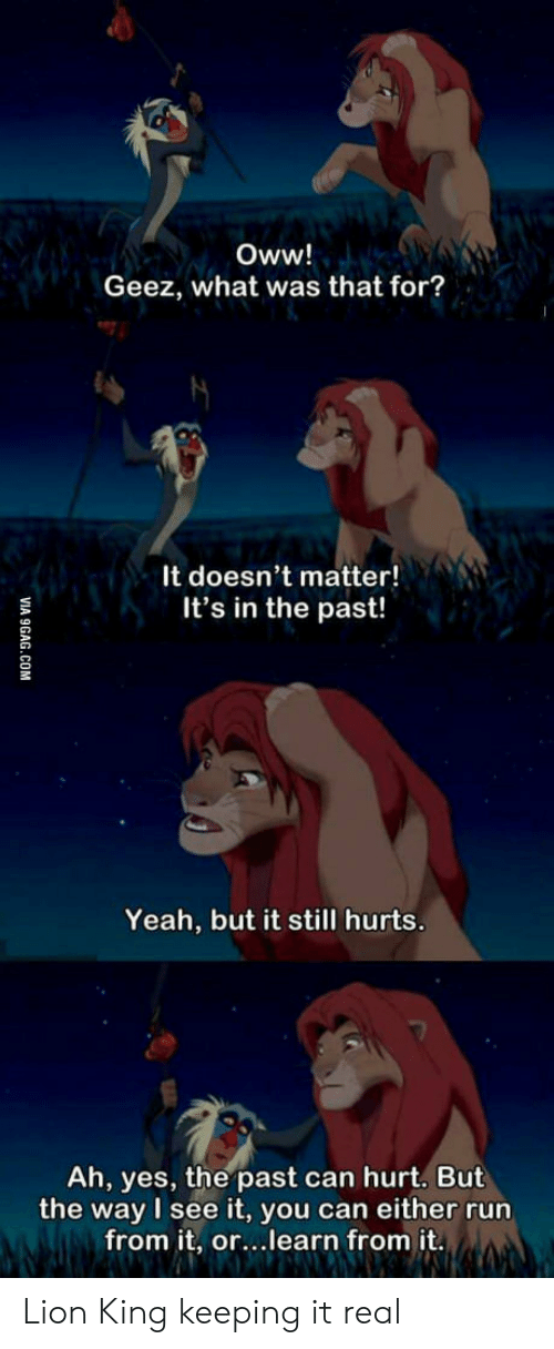 It Real: Oww!  Geez, what was that for?  It doesn't matter!  It's in the past!  Yeah, but it still hurts.  Ah, yes, the past can hurt. But  the way I see it, you can either run  from it, or...learn from it.  VIA 9GAG.COM Lion King keeping it real