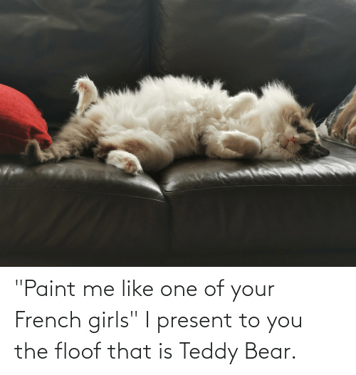 "paint me like one of your french girls: ""Paint me like one of your French girls"" I present to you the floof that is Teddy Bear."
