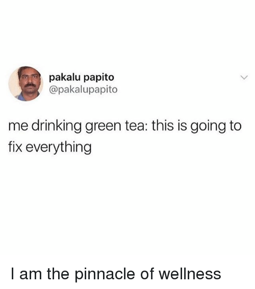 Wellness: pakalu papito  @pakalupapito  me drinking green tea: this is going to  fix everything I am the pinnacle of wellness
