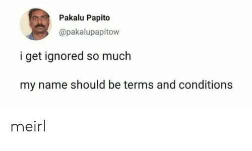 MeIRL, Name, and Terms and Conditions: Pakalu Papito  @pakalupapitow  i get ignored so much  my name should be terms and conditions meirl