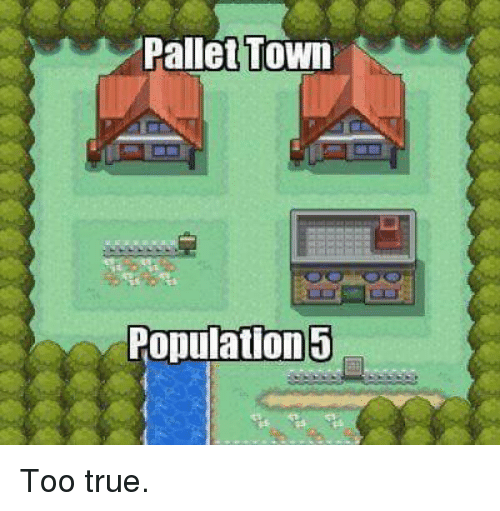 pallet: Pallet Town  Population 5 Too true.