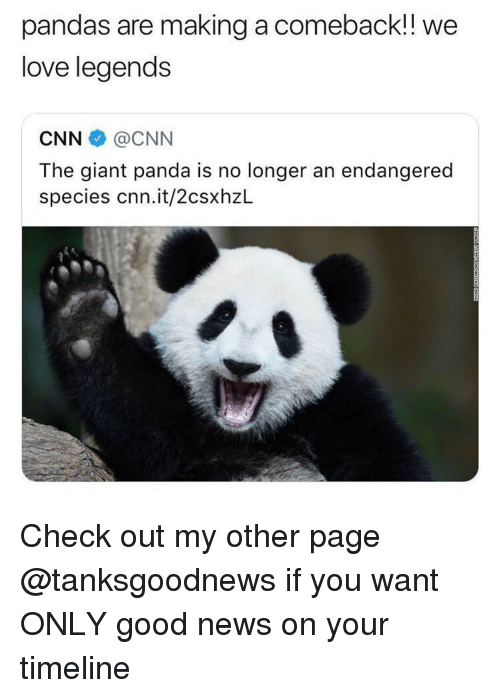 cnn.com, Funny, and Love: pandas are making a comeback!! we  love legends  CNN @CNN  The giant panda is no longer an endangered  species cnn.it/2csxhzL Check out my other page @tanksgoodnews if you want ONLY good news on your timeline