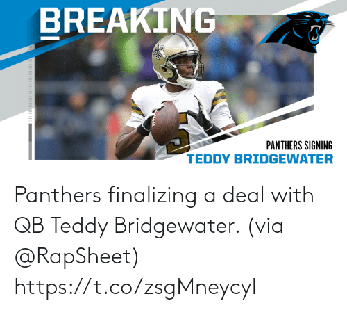 Teddy: Panthers finalizing a deal with QB Teddy Bridgewater. (via @RapSheet) https://t.co/zsgMneycyI