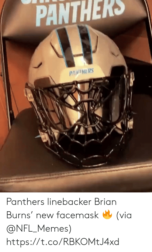 Memes, Nfl, and Panthers: PANTHERS  PANINERS Panthers linebacker Brian Burns' new facemask 🔥 (via @NFL_Memes) https://t.co/RBKOMtJ4xd