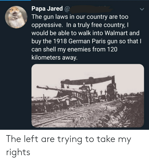 Walmart, Free, and Jared: Papa Jared @  The gun laws in our country are too  oppressive. In a truly free country, I  would be able to walk into Walmart and  buy the 1918 German Paris gun so that I  can shell my enemies from 120  kilometers away. The left are trying to take my rights