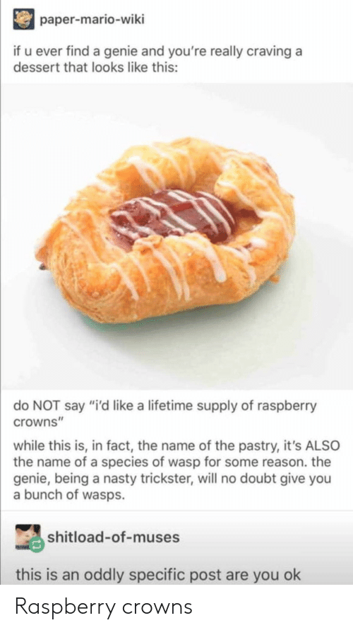 """Crowns: paper-mario-wiki  if u ever find a genie and you're really craving a  dessert that looks like this:  do NOT say """"i'd like a lifetime supply of raspberry  crowns""""  while this is, in fact, the name of the pastry, it's ALSO  the name of a species of wasp for some reason. the  genie, being a nasty trickster, will no doubt give you  a bunch of wasps.  shitload-of-muses  this is an oddly specific post are you ok Raspberry crowns"""