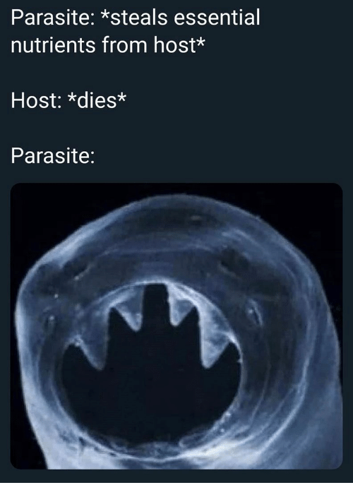 Parasite, Host, and Essential: Parasite: *steals essential  nutrients from host*  Host: *dies*  Parasite: