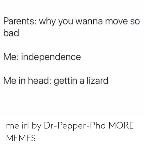 dr pepper: Parents: why you wanna move so  bad  Me: independence  Me in head: gettin a lizard me irl by Dr-Pepper-Phd MORE MEMES