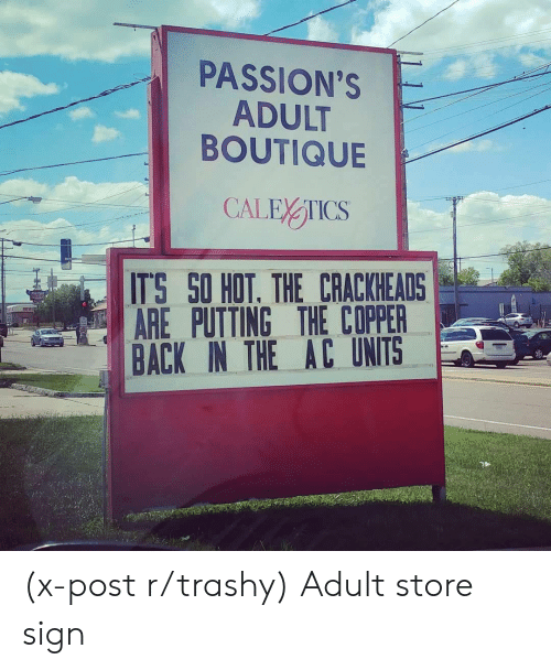 Boutique: PASSION'S  ADULT  BOUTIQUE  ITS SO HOT. THE CRACKHEADS  AREPUTTING THE COPPER  BACK IN THE AC UNITS (x-post r/trashy) Adult store sign