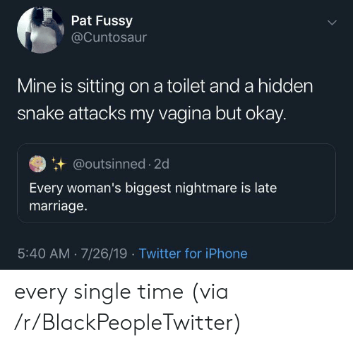 Blackpeopletwitter, Iphone, and Marriage: Pat Fussy  @Cuntosaur  Mine is sitting on a toilet and a hidden  snake attacks my vagina but okay.  @outsinned 2d  Every woman's biggest nightmare is late  marriage.  5:40 AM 7/26/19 Twitter for iPhone every single time (via /r/BlackPeopleTwitter)