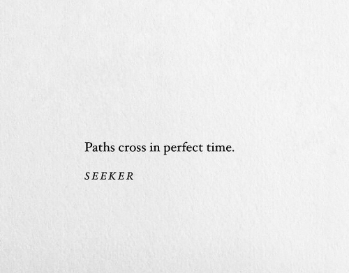 Cross, Time, and Seeker: Paths cross in perfect time  SEEKER