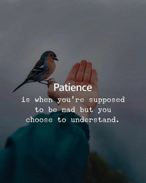 Patience: Patience  is when you're supposed  to be mad but you  choose to understand.