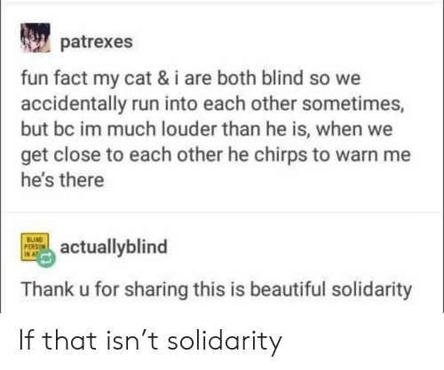 Beautiful, Run, and Cat: patrexes  fun fact my cat & i are both blind so we  accidentally run into each other sometimes,  but bc im much louder than he is, when we  get close to each other he chirps to warn me  he's there  BUIND  PERSON  IN A  actuallyblind  Thank u for sharing this is beautiful solidarity If that isn't solidarity