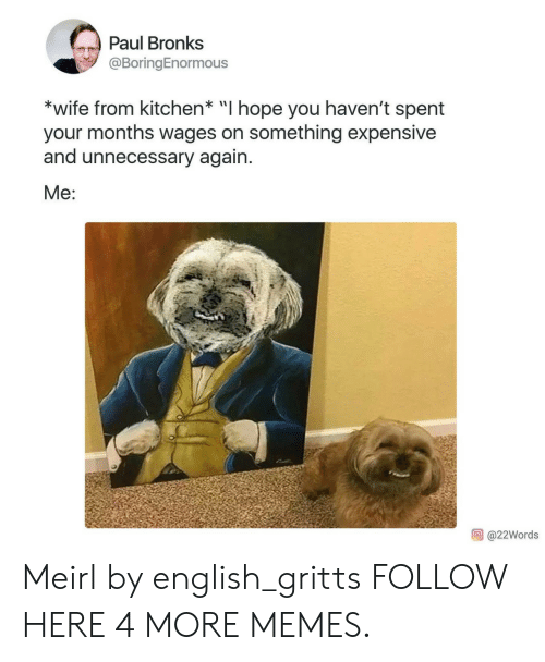 """Dank, Memes, and Target: Paul Bronks  @BoringEnormous  *wife from kitchen* """"I hope you haven't spent  your months wages on something expensive  and unnecessary again.  Me:  @22Words Meirl by english_gritts FOLLOW HERE 4 MORE MEMES."""