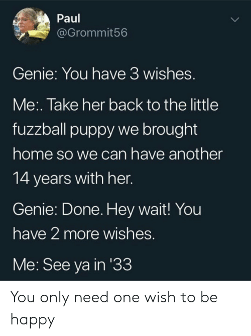 Happy, Home, and Puppy: Paul  @Grommit56  Genie: You have 3 wishes.  Me:. Take her back to the little  fuzzball puppy we brought  home so we can have another  14 years with her.  Genie: Done. Hey wait! You  have 2 more wishes.  Me: See ya in '33 You only need one wish to be happy