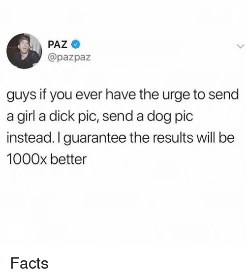 Facts, Dick, and Girl: PAZ  @pazpaz  guys if you ever have the urge to send  a girl a dick pic, send a dog pic  instead.Iguarantee the results will be  1000x better Facts