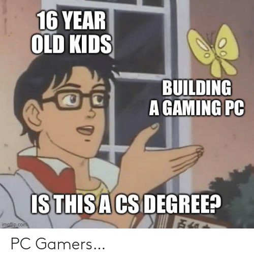 gamers: PC Gamers…